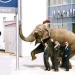 Die Eröffnung des Betriebes in Gersthofen vor 20 Jahren – der Elefant symbolisiert treffend das Konzept Unimog.