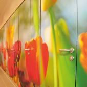 kd153 sana3 170x170 - Digitaldruck auf Sanitärtrennwänden – Kunststücke für Schul-WC's
