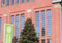 Prachtvolle Weihnachtsbäume bis 20 Meter für Märkte und Events