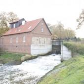 Die alte Wassermühle in Greven-Aldrup stand lange leer und verfiel zusehends.