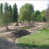 Auch die Gewässer-Renaturierung gehört zum Aufgabenspektrum. (Fotos: Tiefbauamt der Stadt Karlsruhe)