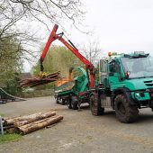kd174 unimog3 170x170 - Mit 300 PS Bäume zu Kleinholz machen