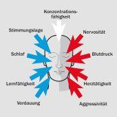 kd185 unika3 170x170 - UNIKA Kalksandstein – perfekter Schutz vor zu viel Lärm  -  Ruhe bitte!