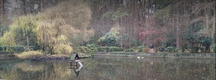 See im Wald- und Vogelpark Troisdorf (@EMIKO Gruppe)
