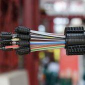 kd219 dns net2 170x170 - Glasfaser für alle – das Giganetz in der Börde nimmt Fahrt auf