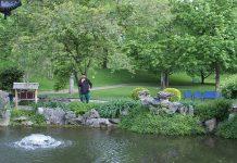 Luisenpark in Mannheim setzt auf Mikroorganismen zur Gewässersanierung und hat damit Erfolg!