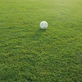 kd419 emiko2 170x170 - Fußball spielen und Golfen auf sattgrünen Rasenflächen ist keine Kunst!