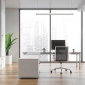 Die Lichtlinie sorgt für hochwertiges, normgerechtes Licht im Office und eignet sich sowohl für Einzel- als auch Doppelarbeitsplätze. (Foto: Composing Regiolux & istock ismagilov)