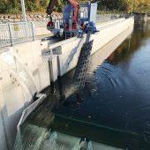 Reinigungspower an der Wehranlage: Der Horizontalrechenreiniger befreit den Feinrechen, der hier unterhalb des Wasserstandes liegt, von Schwemmgut. (Foto: Braun Maschinenfabrik)