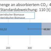 Mit der Standardabweichung werden individuelle, wachstumsbedingte Schwankungen der berechneten Biomasse berücksichtigt. Die unterirdische Biomasse wird aufgrund der hohen Standortdiversität pauschal veranschlagt.
