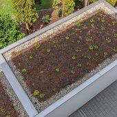 Eine rollnahtgeschweißte Abdeckung aus Edelstahl Rostfrei gewährleistet die geforderte Dichtigkeit und Nachhaltigkeit eines Gründachs bei jeder Form von Dachbegrünung. (Foto: © WZV / Dachdeckerei Hammerl)